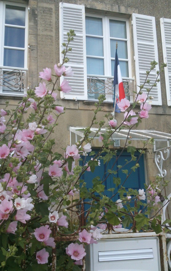 French home, flowers